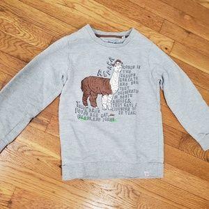 Gray sweatshirt with alpaca graphics